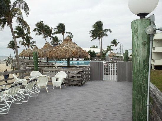 Caloosa Cove Resort & Marina:                   more Calossa Cove deck