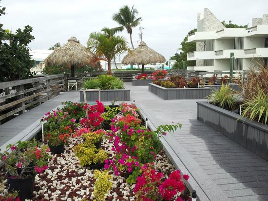 Caloosa Cove Resort:                   Calossa Cove deck with sitting areas