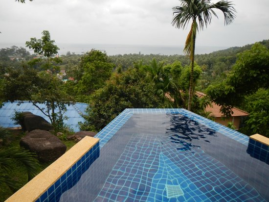 The Place Luxury Boutique Villas :                   view from room in your own private pool