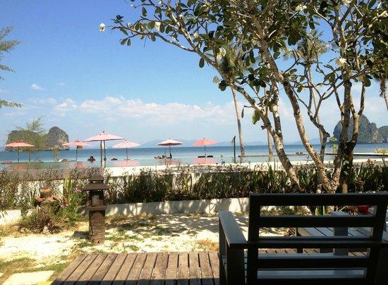 天雅度假村照片