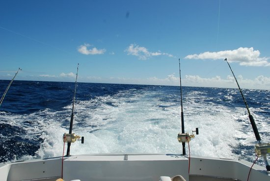 Mystic Amara II - Deep Sea & Bottom Fishing Charters: wake