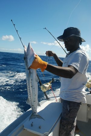 Mystic Amara II - Deep Sea & Bottom Fishing Charters: Barracuda
