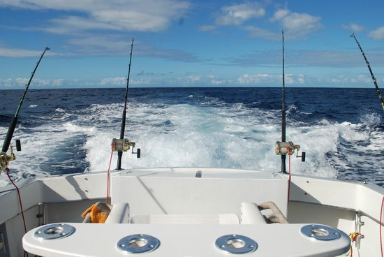 Mystic Amara III - Deep Sea & Bottom Fishing Charters: starting to get the lines out