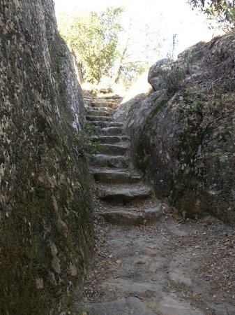 Mount Diablo State Park:                   stairs @ Rock City