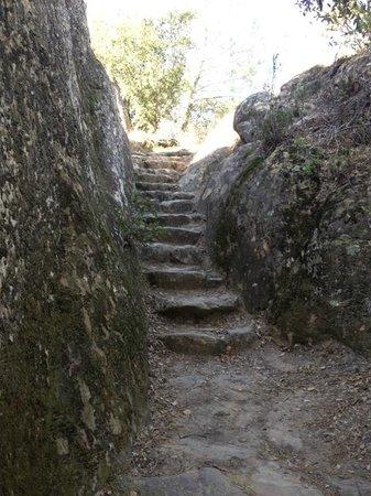 Mount Diablo State Park照片