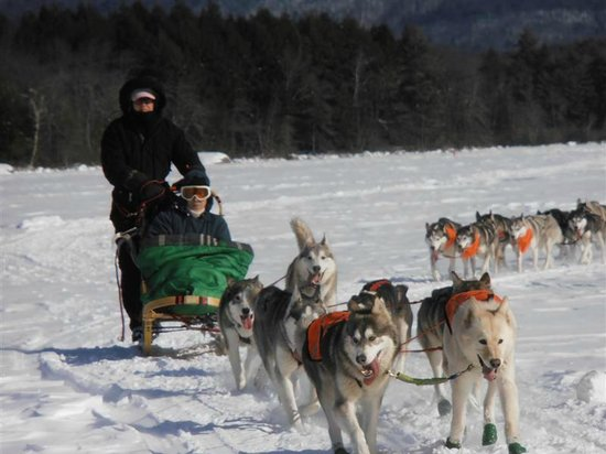 Valley Snow Dogz: Squam Lake Tours