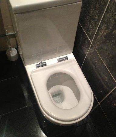 Chester Hotel:                   Broken toilet seat