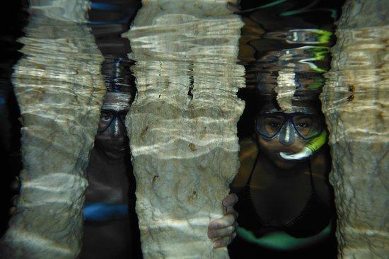 Cenotes Dos Ojos: Dos Ojos