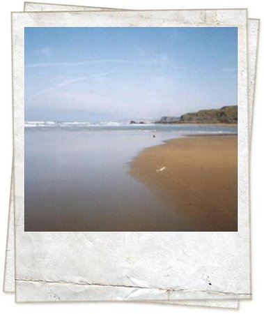 Widemouth Manor: Awesome Beaches for Miles