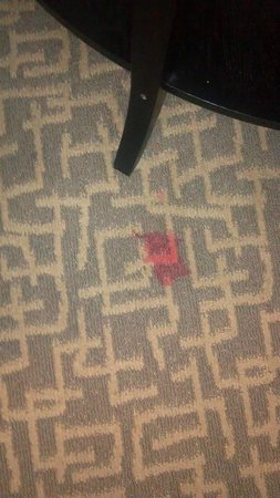 Holiday Inn & Suites Beaufort at Highway 21:                   Stain carpet