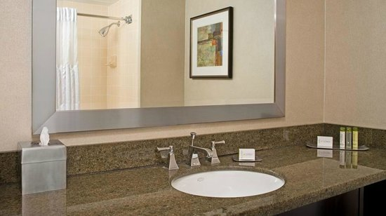 DoubleTree by Hilton Hotel Chicago - Schaumburg: Guest Bathroom