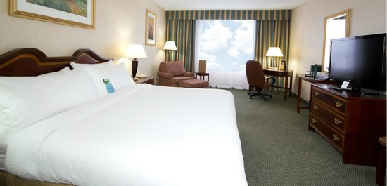 Sawridge Inn and Conference Centre Edmonton South: One King Bed
