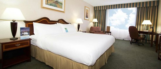 Sawridge Inn and Conference Centre Edmonton South: One Queen Bed