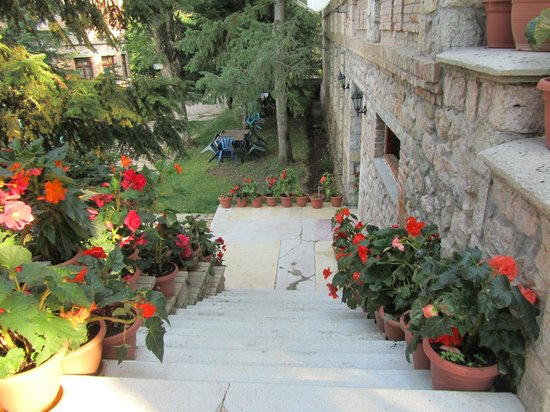 Hotel Akademia :                   Steps Leading from the Dining Hall