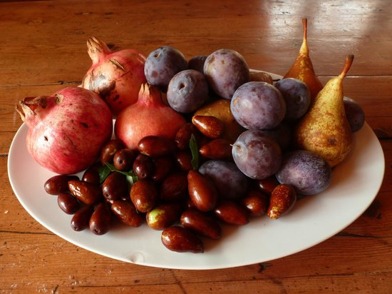 Ca del Rocolo:                   home grown fruit
