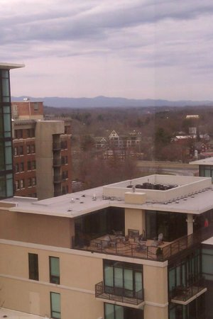 Renaissance Asheville Hotel :                   View from 9th floor
