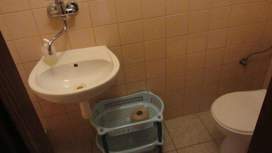 Penzion Slavia: bathroom