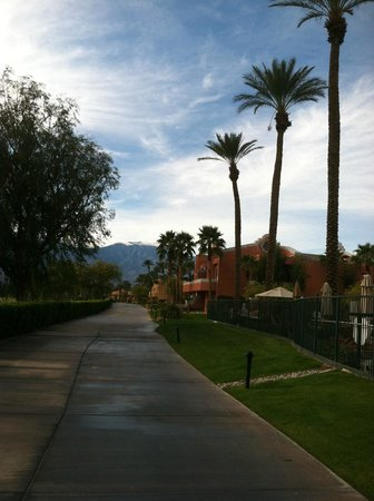 Westin Mission Hills Golf Resort & Spa: Beautiful palms and mountains in the distance