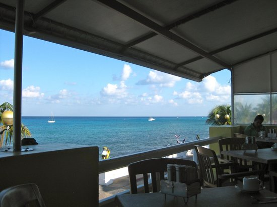 Restaurante Del Museo:                   View from the restaurant to the North