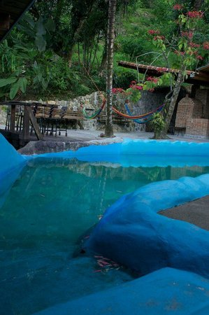 Omega Tours Eco Jungle Lodge: Pool