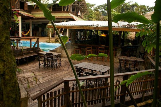 Omega Tours Eco Jungle Lodge: bar/pool/restaurant area
