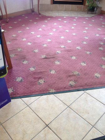 Days Inn Hinckley:                   Lobby Carpet