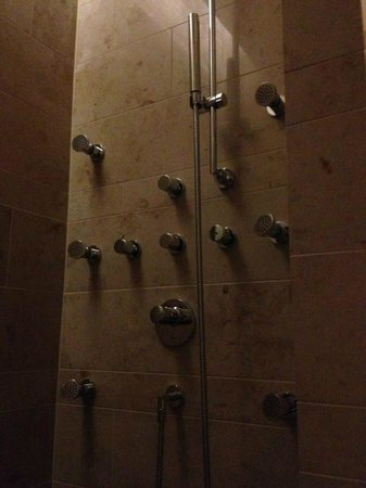 The Dolder Grand:                   Inside the Shower