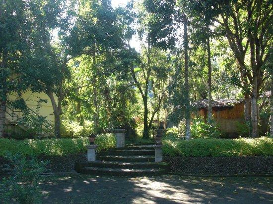 Tasik Ria Resort Manado:                   giardino
