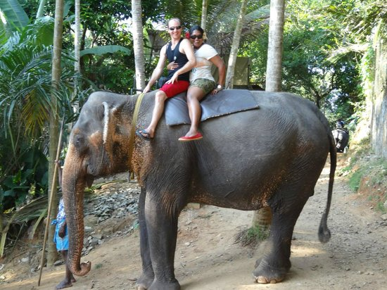 Pinnawala Elephant Orphanage:                   our ride
