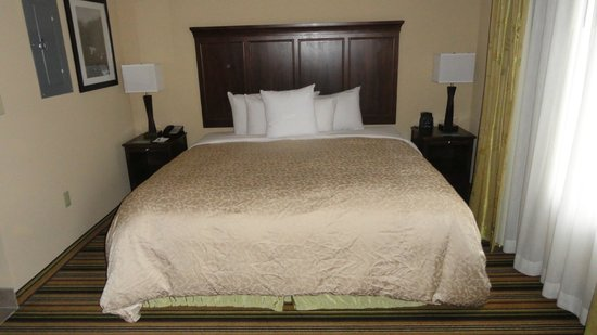 Homewood Suites by Hilton Charlotte/Ayrsley: King bed