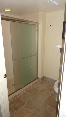 Homewood Suites Charlotte/Ayrsley: shower
