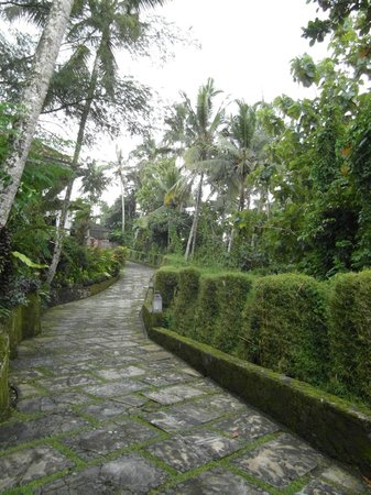 Villa Santai:                   Road leading to villa