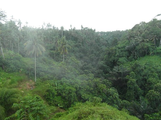 Villa Santai:                   Rising mist