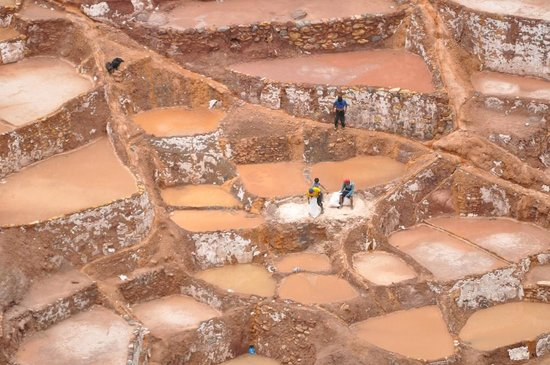 Salinas de Maras:                   Men working in one salt pond.