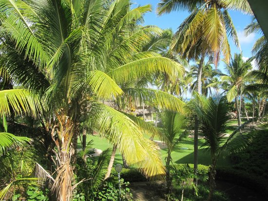 Grand Palladium Punta Cana Resort & Spa: Grounds