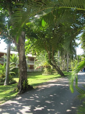 Grand Palladium Punta Cana Resort & Spa: Territory