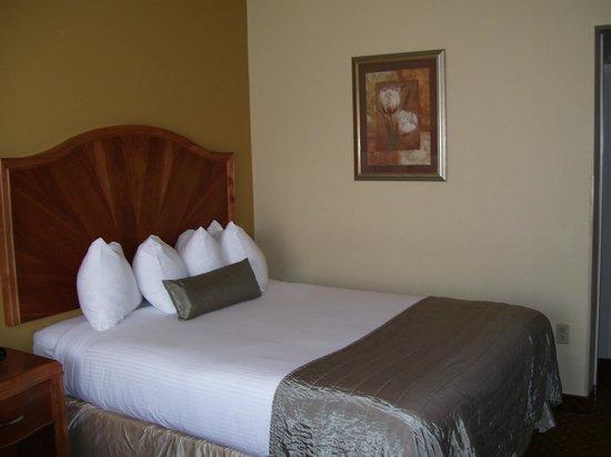Baymont Inn & Suites Asheville/biltmore: Very Nice
