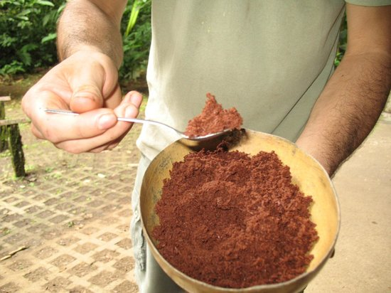 Tirimbina Biological Reserve:                   ground cocao after roasting with a little sugar and cinnamon added