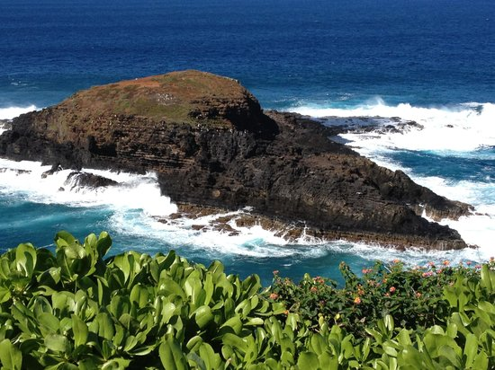 Kilauea Point National Wildlife Refuge: Off the tip of the Point