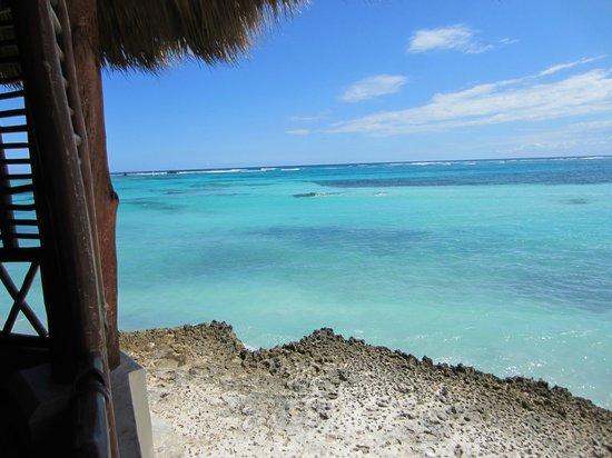 Club Med Punta Cana:                                     vue à partir de la salle à manger