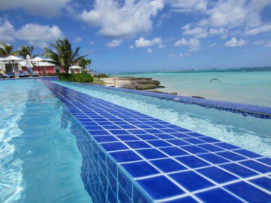Club Med Punta Cana:                                     piscine à débordement + mer
