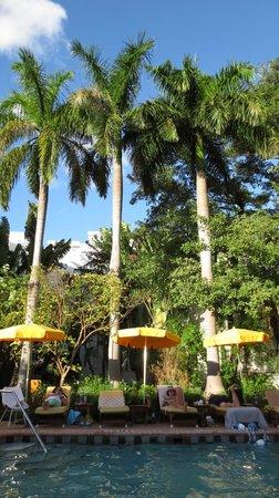 فريهاند ميامي - هوستل:                   Pool/Hotel                 