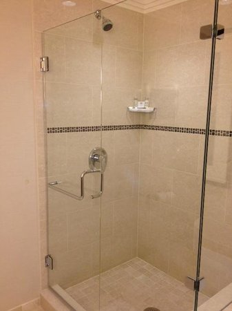 Loews Atlanta Hotel: Huge shower