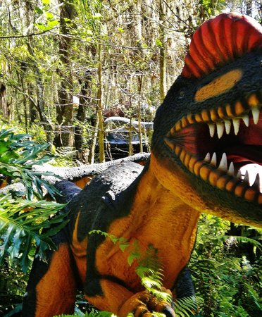 Dinosaur World:                   Rawr!