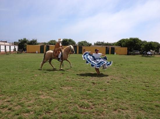 Caballos Peruanos de Paso y Marinera:                   Marinera con caballo de paso