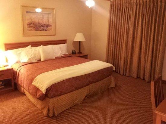 Homewood Suites by Hilton Phoenix Chandler: King Room