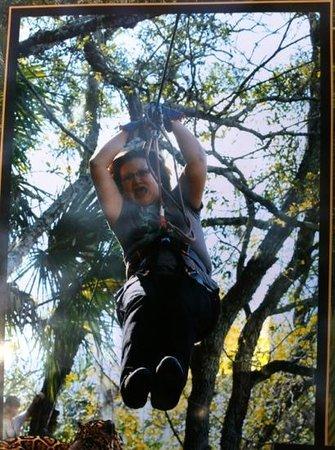 Treetop Trek:                                     zip lines