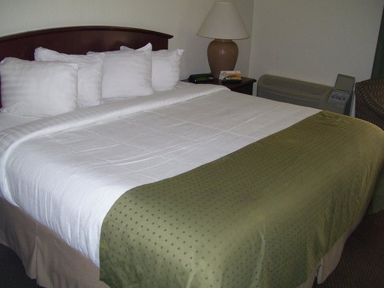 Quality Inn & Suites: Comfortable Bed