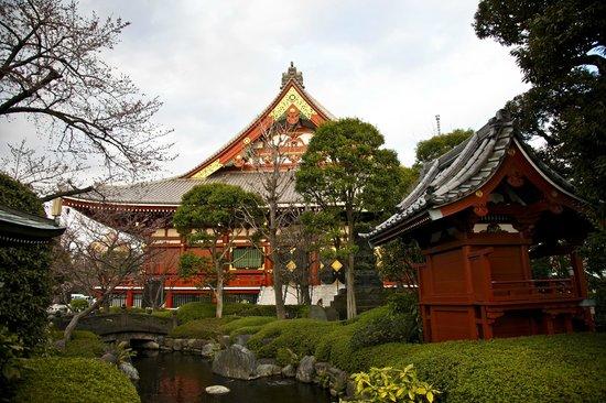 travel tours hato dynamic tokyo tour