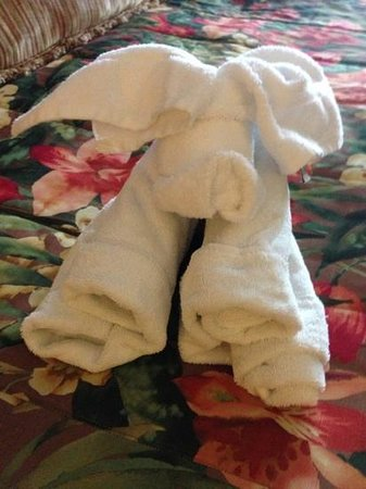 Pacific Terrace Hotel:                                     towel animal on your bed!